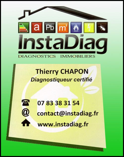 instadiag - thierry chapon, , diagnostic immobilier,